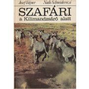 SZAFÁRI A KILIMANDZSÁRÓ ALATT