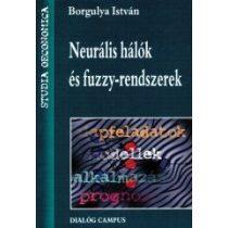 NEURÁLIS HÁLÓK ÉS FUZZY-RENDSZEREK