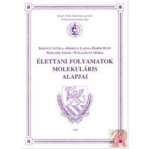 ÉLETTANI FOLYAMATOK MOLEKULÁRIS ALAPJAI