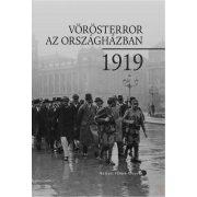 VÖRÖSTERROR AZ ORSZÁGHÁZBAN, 1919