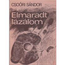 ELMARADT LÁZÁLOM
