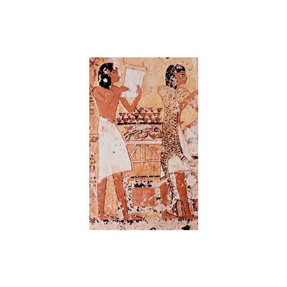 THE MORTUARY MONUMENT OF DJEHUTYMES (TT 32)