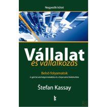 VÁLLALAT ÉS VÁLLALKOZÁS IV. KÖTET - BELSŐ FOLYAMATOK