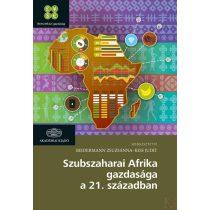SZUBSZAHARAI AFRIKA GAZDASÁGA A 21. SZÁZADBAN