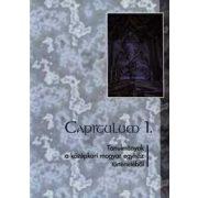 CAPITULUM I.